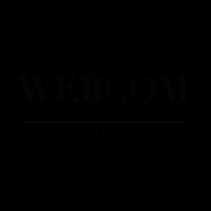Agence WEBCOM